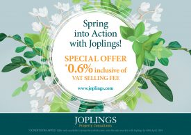 Spring into Action with Joplings